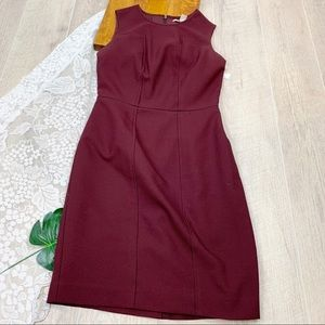 Banana Republic Red Sleeveless Sheath Dress 1833
